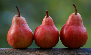 2019-05-26 20_59_32-Pears _ HD photo by Shumilov Ludmila (@lsfineartphotography) on Unsplash