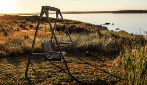 2019-06-22 19_28_58-Swing by the lake at sunset _ HD photo by Jon Eckert (@joneckert) on Unsplash