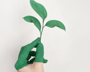 2019-11-15 21_20_35-Person's Left Hand Holding Green Leaf Plant · Free Stock Photo