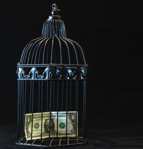 2019-12-23 10_31_43-Black Steel Pet Cage With One Dollar · Free Stock Photo