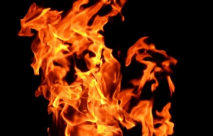 2020-03-26 21_05_22-Fire Wallpaper · Free Stock Photo