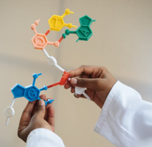 2020-06-04 22_28_52-Crop chemist holding in hands molecule model · Free Stock Photo